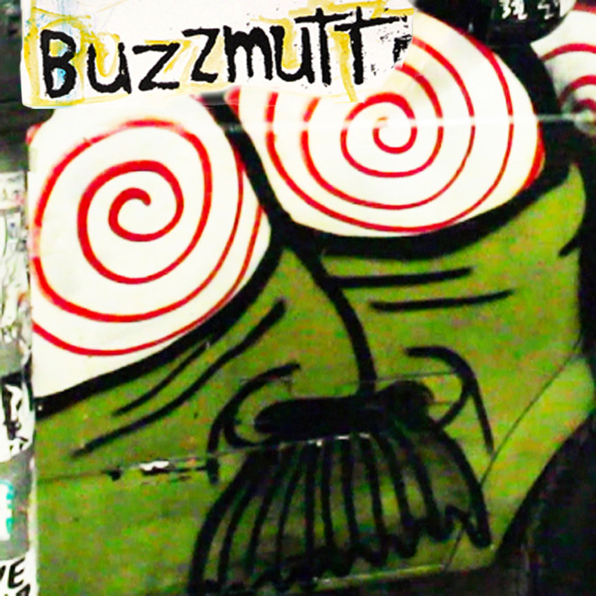 Buzzmutt​ - Static In The Minds Eye Chpt 1. (San Francisco, 2012)